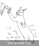 coloriage caracal